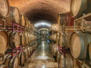 Just imagine people posting about their everyday experience at your winery or vineyard.